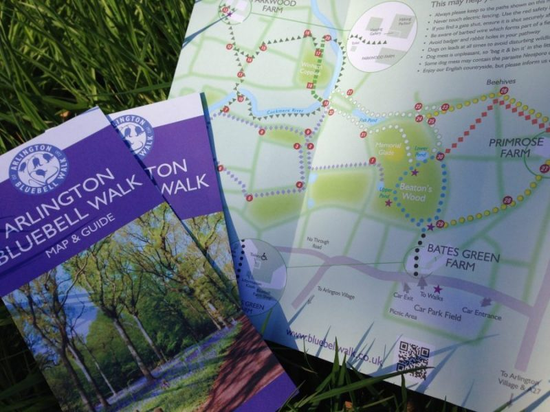 BLUEBELL WALK MAP